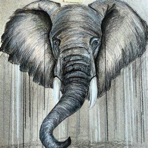 elephant drawing elephants pinterest