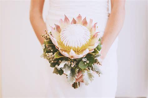 protea bridal bouquet   nouba.com.au   protea bridal bouquet