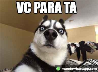 Vc Para Status E Imagens
