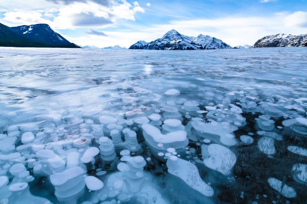 Image result for Abraham lake