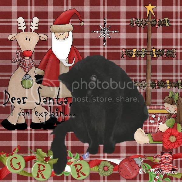 Grr,House Panther,Domestic Cat,Christmas