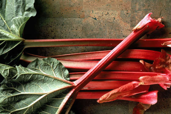 Slide 12 de 18: Rhubarb stalks are great in a crumble – but avoid the leaves at all costs. They contain poisonous toxins which could make you very sick, or even kill you.