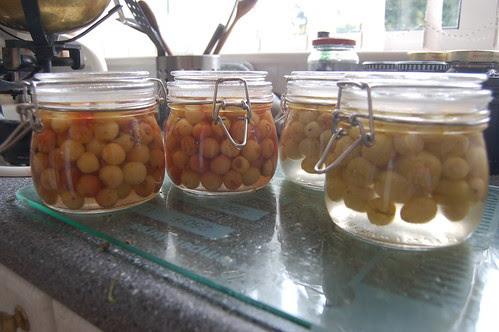 bottled fruit Aug 10