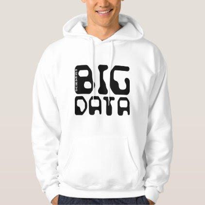 Big Data Scientist Hoodie