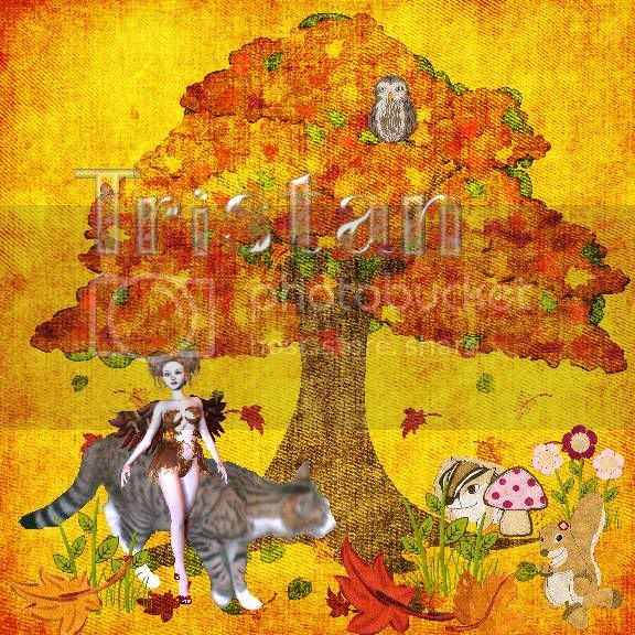 Autumn,Sir Tristan,Tabby Cat,Fairies