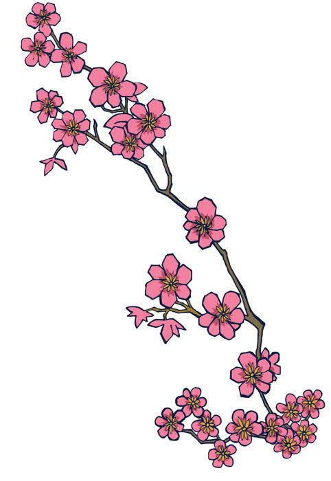 Nice Cherry Blossom Tree Branch Tattoo Drawing