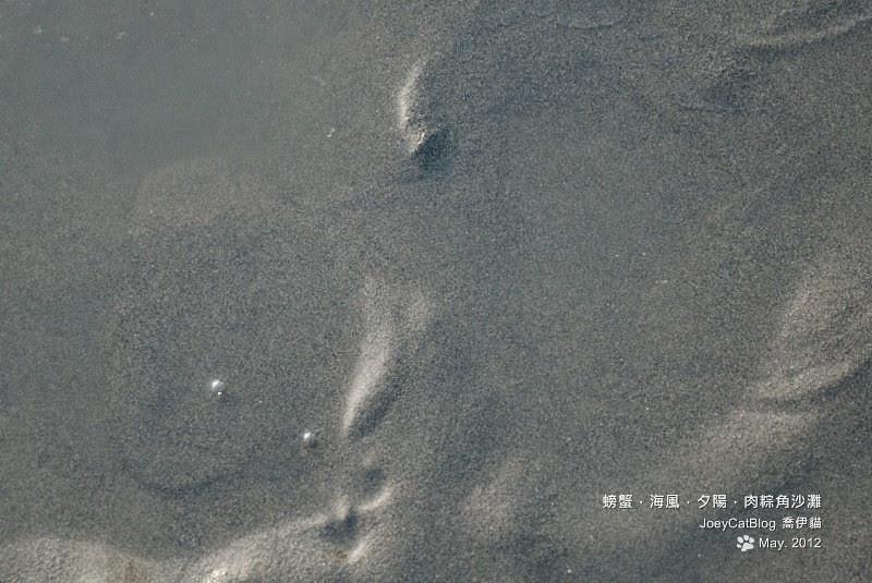 2012_0506_螃蟹,海風,夕陽,肉粽角沙灘DSC_4669