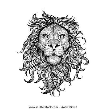 vector black  white tattoo lion illustration tattoo