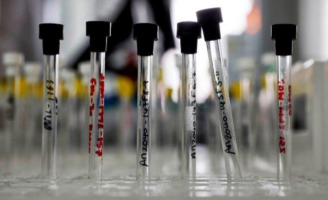 Varios tubos de laboratorio en fila