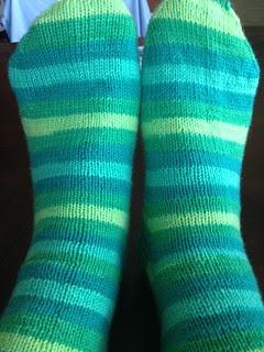 Felici Aquarium socks