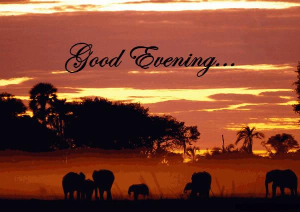 15 Most Beautiful Good Evening Animated Gif Pictures And Guaranteed
