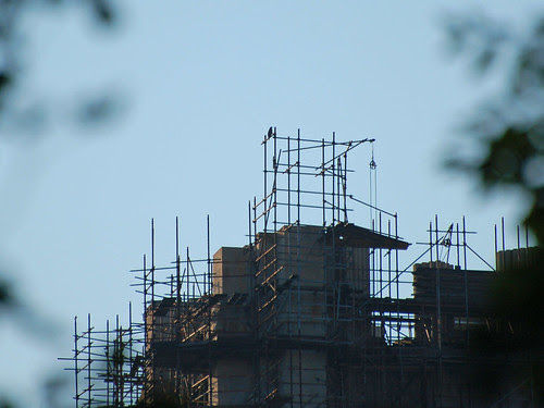 Scaffolding with Hawk