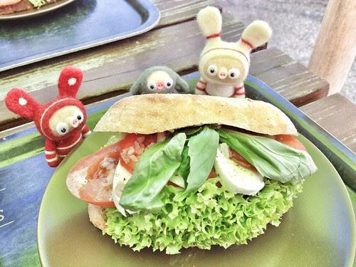 mozzarella pesto sandwich