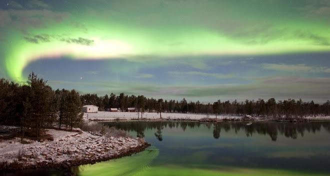 Los bosques cubrirán parte del Ártico