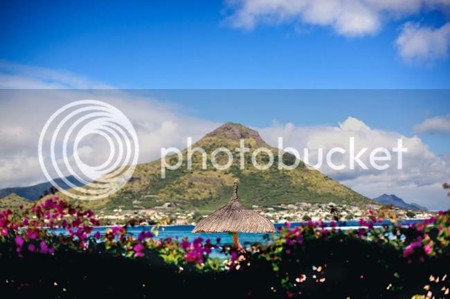 http://i892.photobucket.com/albums/ac125/lovemademedoit/mauritiuswedding5.jpg?t=1311182605
