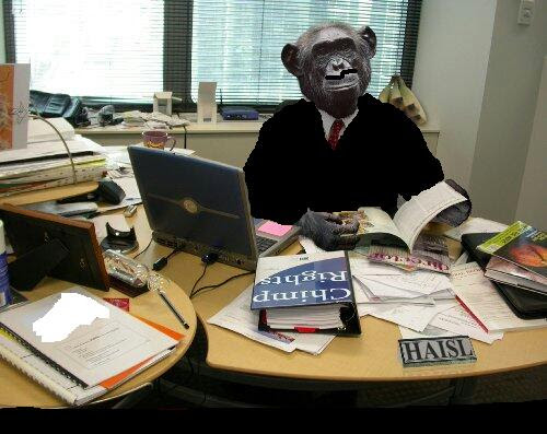 The Monkey Business They Call Governance - By Reuben Abati