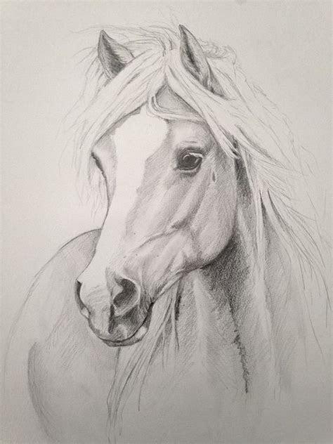ausmalbilder pferdekopf erwachsene  kostenlose