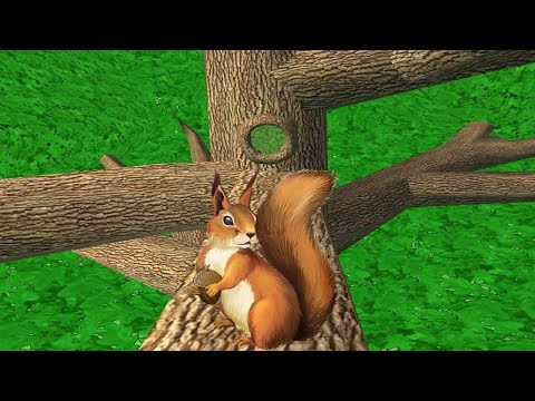 Squirrel Simulator By Avelog - Life Of Squirrel - Gameplay Part 1