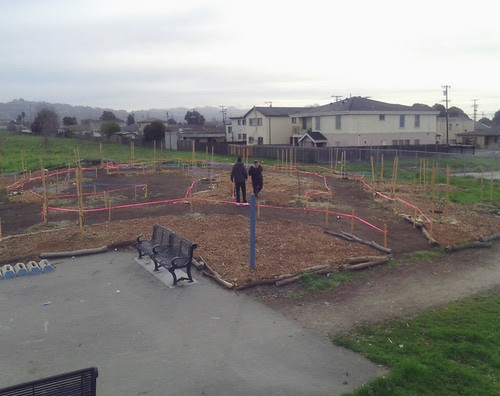 An area on the Richmond, Calif., Greenway is prepped for planting to create the Edible Forest.