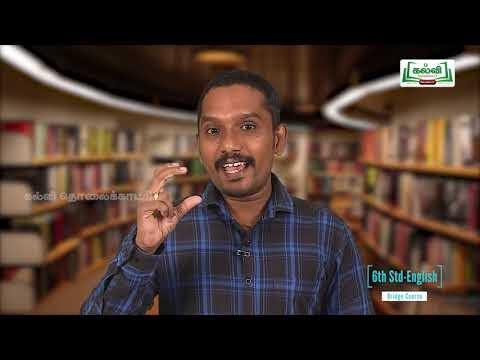 6th English Bridge course Grammar Types of Pronouns Unit 3 Kalvi TV
