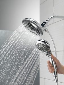 Delta In2ition Two In One Shower Head Review