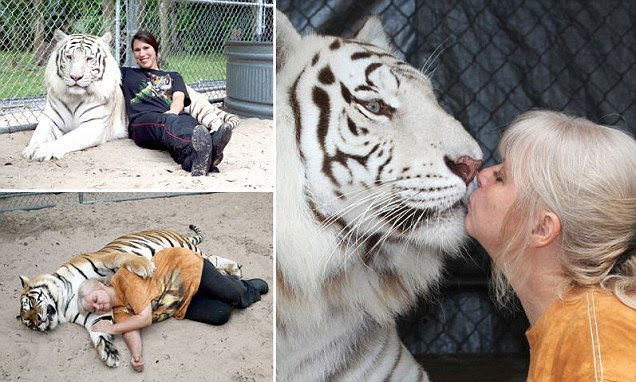 Janice Halley, who lives with tigers at her home in Orlando, Florida