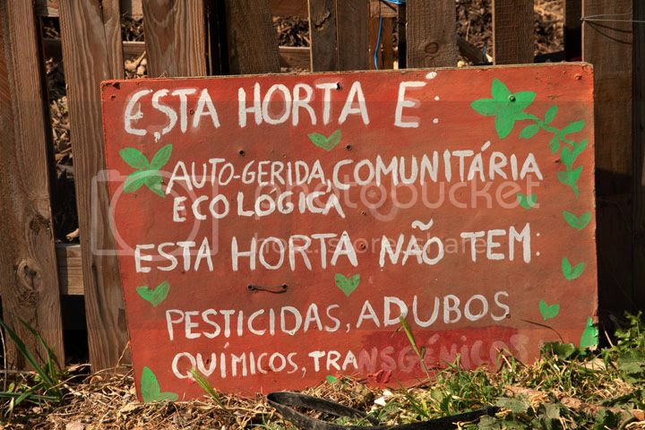 photo _Horta_zps6623268a.jpg