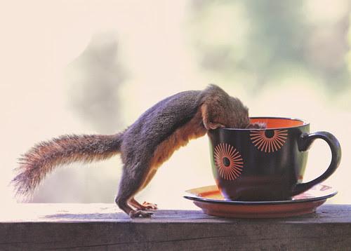 Mmmmm, coffee! por Peggy Collins