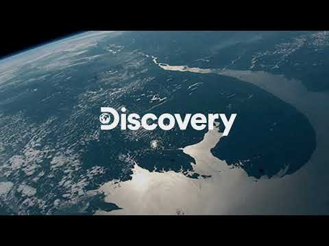 Discovery Channel Ao Vivo