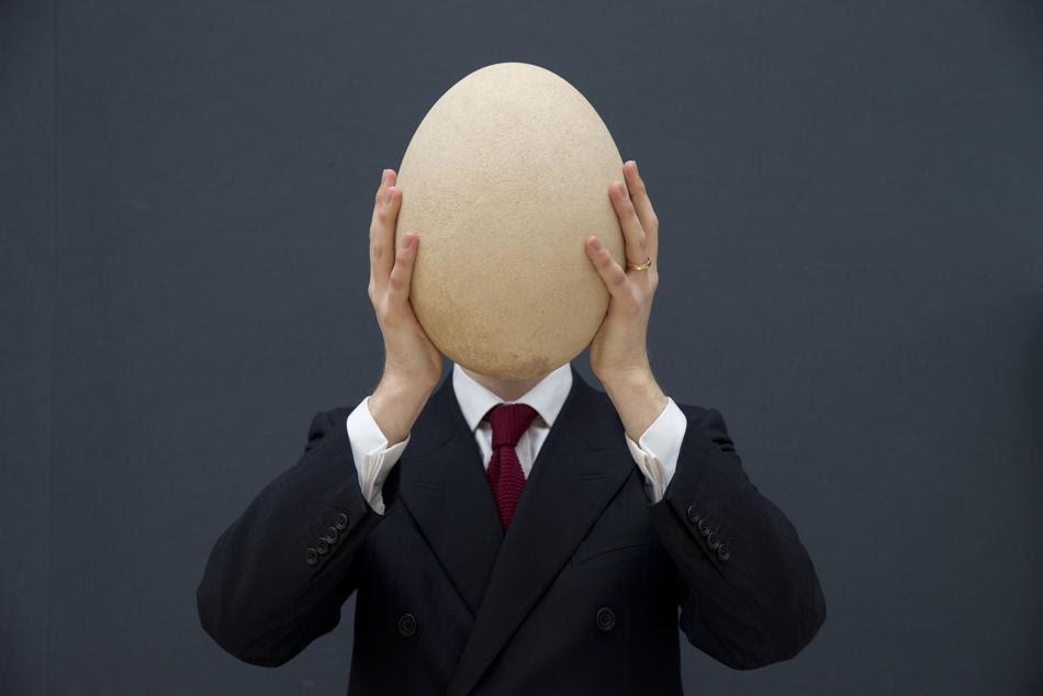 Ένα τεράστιο, σχεδόν απολιθωμένο αυγό πουλήθηκε για το ποσό των 66.675 λιρών (79.265 ευρώ) στον γνωστό οίκο δημοπρασιών Christie's, του Λονδίνου. ο αυγό προέρχεται από ένα «πουλί ελέφαντα», ένα είδος που πλέον έχει αφανιστεί αρκετές εκατοντάδες χρόνια πριν. Το τεράστιο αυτό αυγό βρέθηκε στο νησί της Μαδαγασκάρης και πιστεύεται ότι χρονολογείται πριν το 17ο αιώνα.