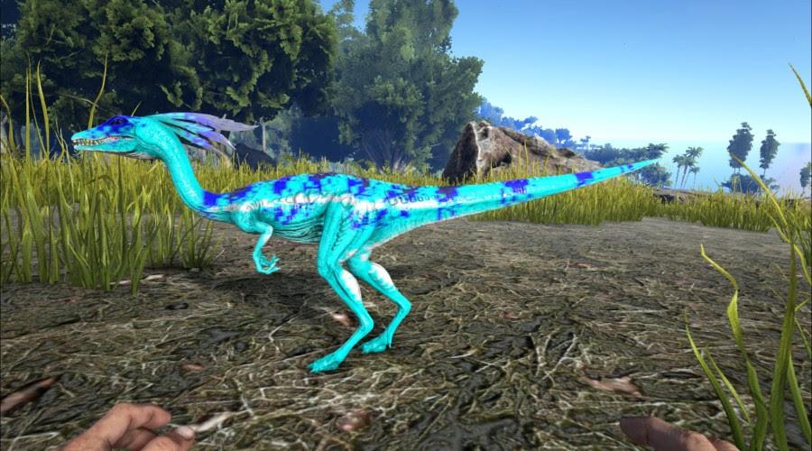 Blue Chameleon Compy Ark Paint The Best Paint Ark Warpaint Ark Survival Evolved Skins Paints Warpaints