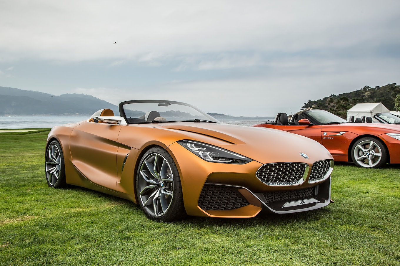 2019 Bmw Z4 New Cars Review