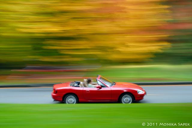 Autumn ride III
