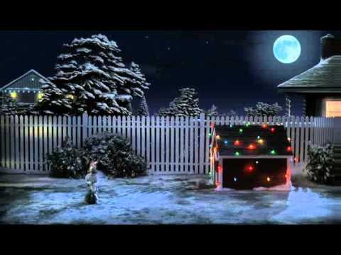 Gdy spełniają się marzenia... Zostań Świętnym Mikołajem