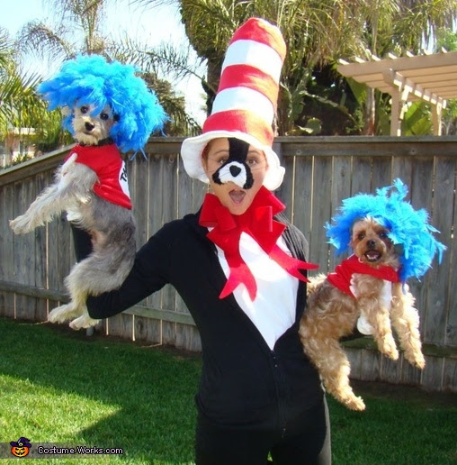 Cat In The Hat With Thing One And Thing Two Dr Seuss Character Costumes