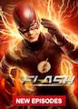 Flash, The - Season 5