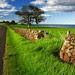 Kiama Dry Stone Wall, New South Wales, Australia IMG_4404_Kiama