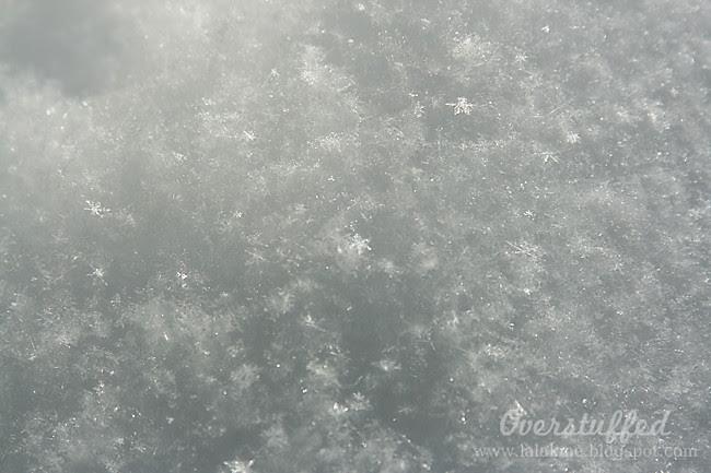 IMG_7476 snow glittering in the sun web