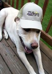 Zukes_Zeus_hat_510d