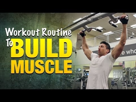 workout routine to build muscle build bigger arms legs
