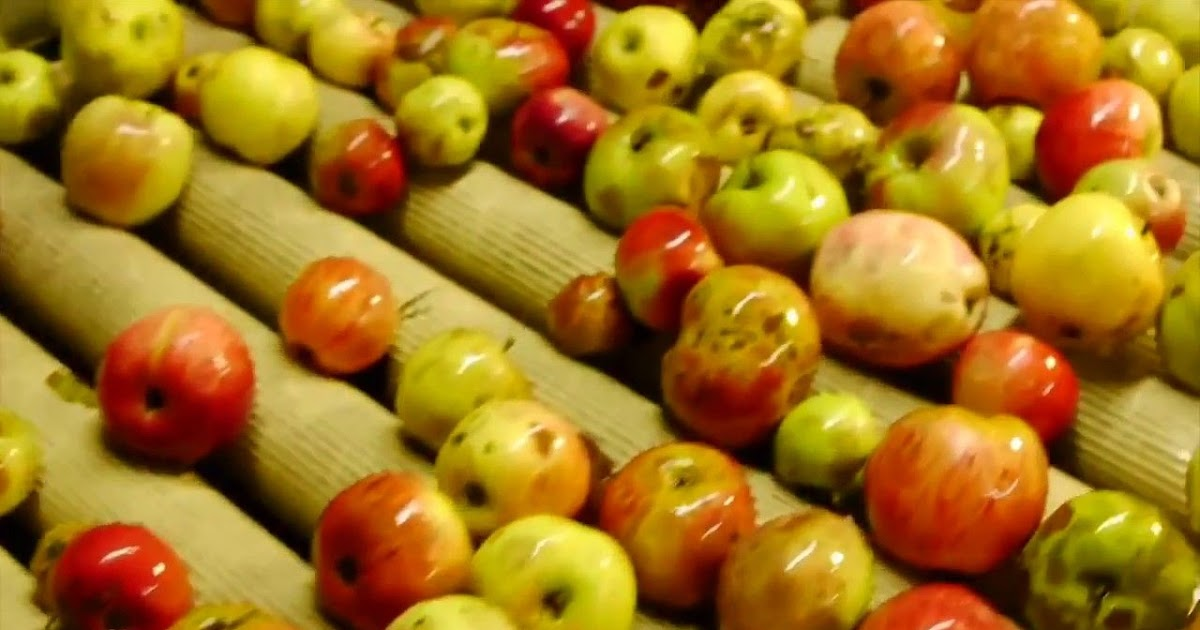 14+ Fruit Juice Contract Manufacturers Pictures | Top ...