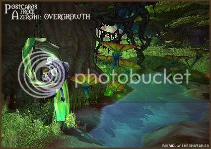 PostcardsFromAzeroth.com: Overgrowth
