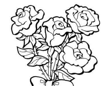 Desenhos Para Colorir De Flores E Rosas Flores Imagenes