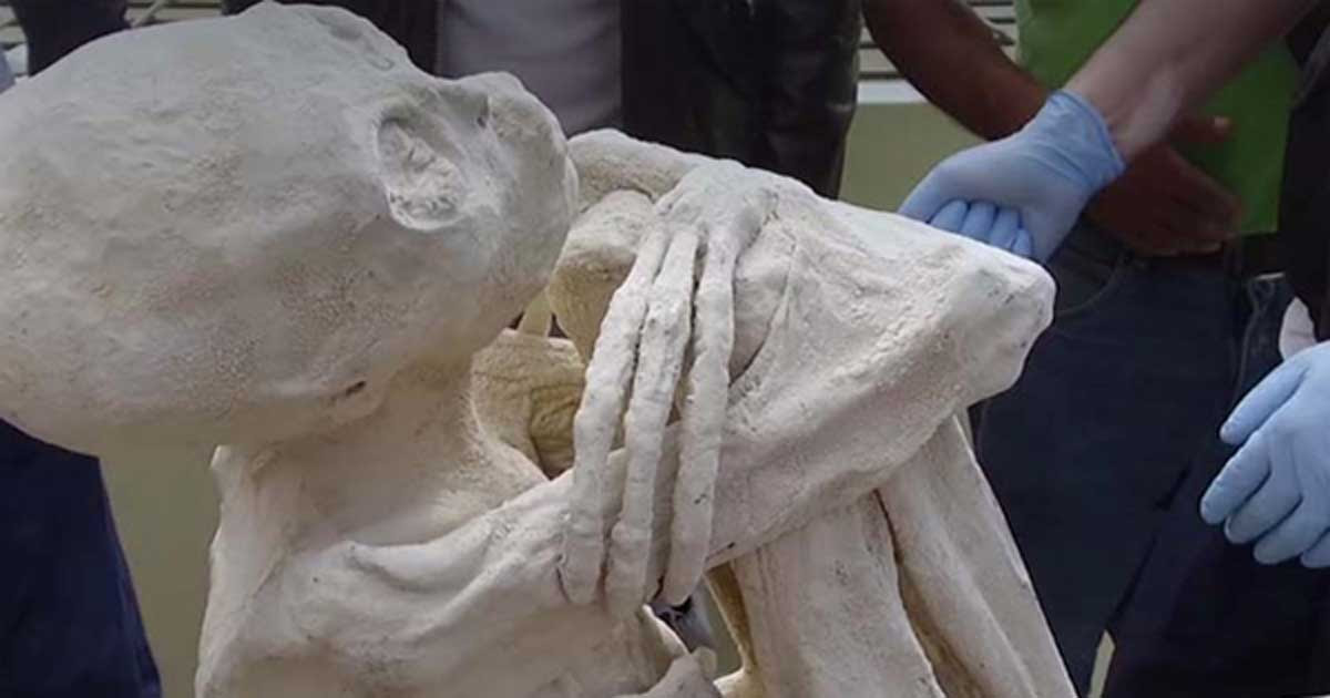 http://www.ancient-origins.net/sites/default/files/field/image/Mummified-Humanoid.jpg