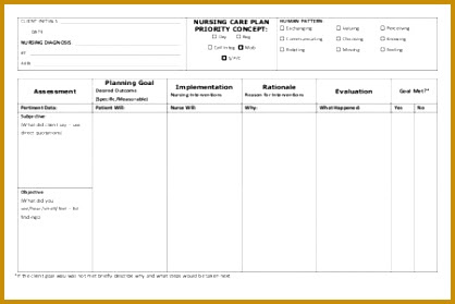 4 Nursing Care Plan Templates Blank   FabTemplatez