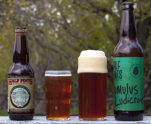 Double Review: Half Pints' Humulus Ludicrous 2010 vs 2011 by Cody La Bière