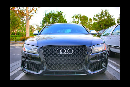 2014 Audi A5 Grill Replacement