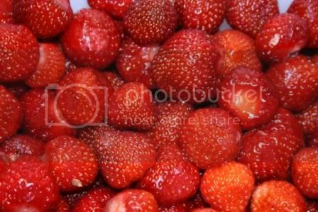 Nydlege jordbær