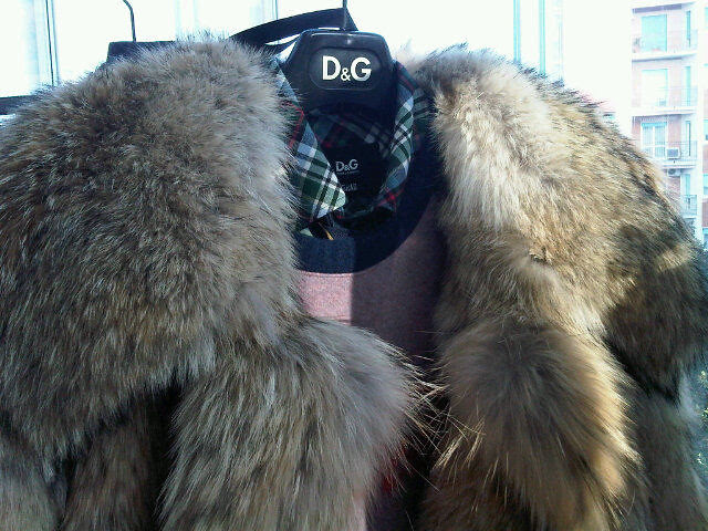 D&G fur - by Vman