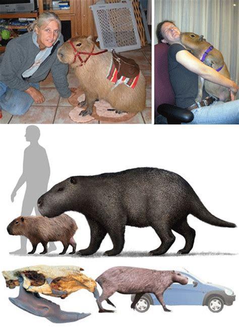 Monster Mash: 8 Giant, Earth Shaking, Prehistoric Beasts   Urbanist